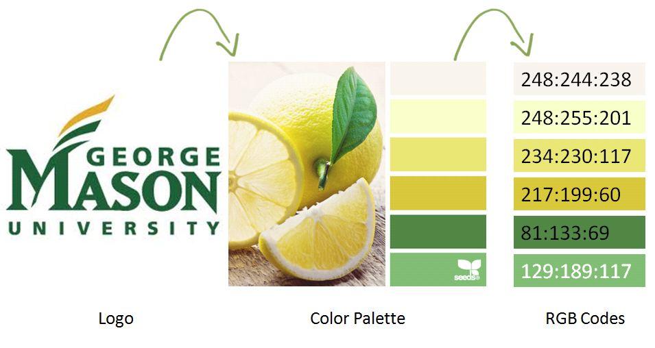 chart_colors